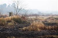 印尼烧荒造成污染