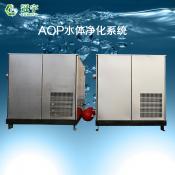 AOP水体净化系统背面