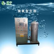 500g空气型臭氧发生器